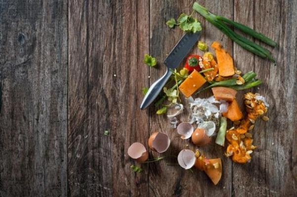 Compostaggio rifiuti organici