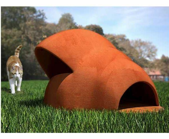 Cuccia per gatti, Gattomaca di Phicubo