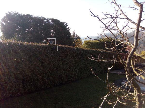 Sistemi di allarme per abitazioni senza fili, fari dissuasivi in giardino, by Silentron s.p.a.