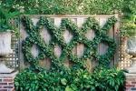 Edera decorativa su grata da Pinterest