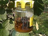 Trappole per mosche e calabroni TapTrap