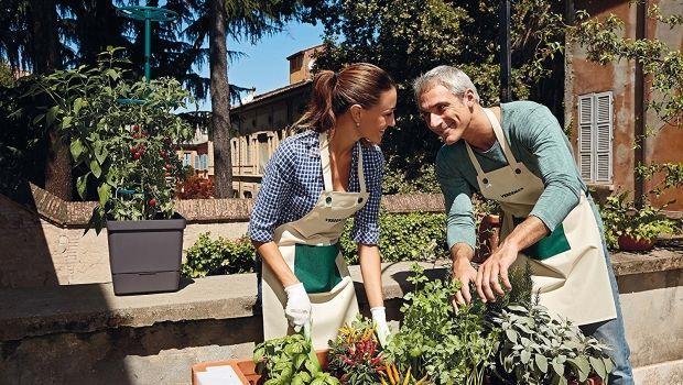 Consigli per l'orto perfetto: nel terreno o sul balcone