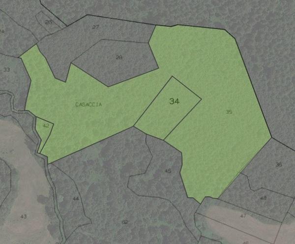 Mappale e particella dettaglio su Google Earth con Catamaps