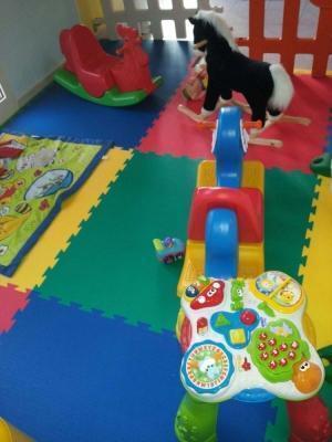 Pavimento antitrauma nella ludoteca 'il mondo dei bambini'