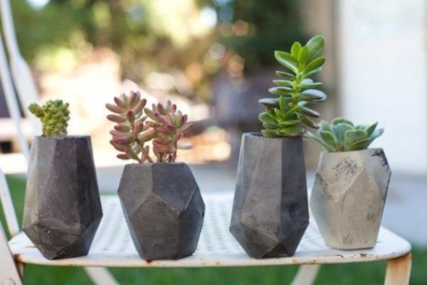 Piante grasse in vasi di pietra da Pinterest
