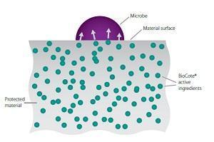 Ristrutturare un bagno: tecnologia antibatterica BioCote