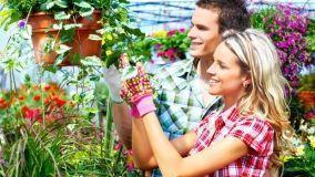 Annaffiare l'orto e il giardino in terrazzo con i sistemi d'irrigazione a goccia