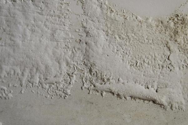 Intonaco: efflorescnza salina