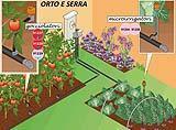 Irrigarazione orto