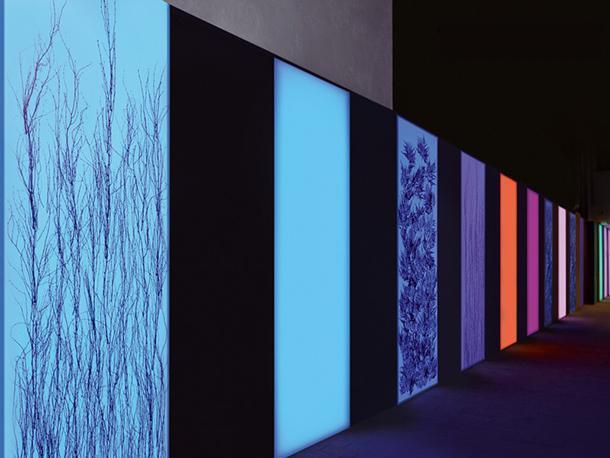 Pannelli stampati e retroilluminati in plexiglass di Bencore