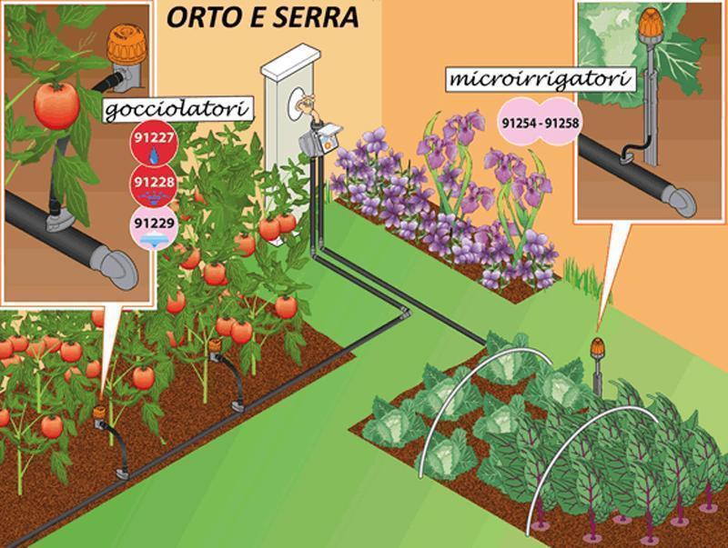 Coltivare l'orto: come irrigarle le piante