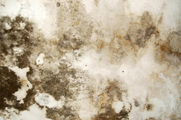 Umidità su muro senza isolamento