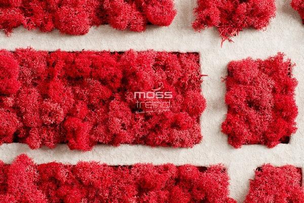 Decorazioni da parete di muschio rosso Moss Trend