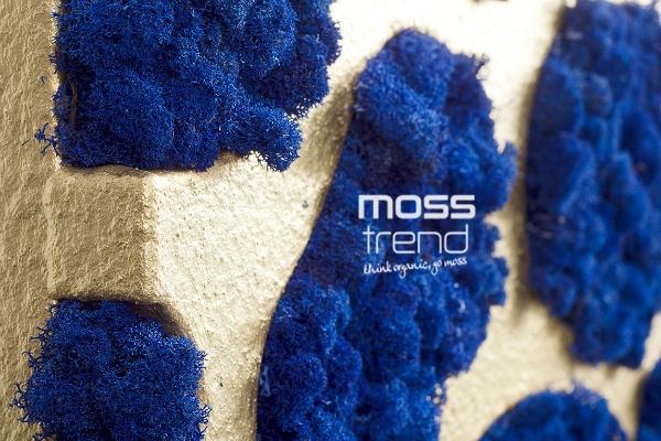 Decorazioni da parete di muschio blu Moss Trend
