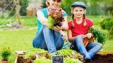 Orto domestico: come irrigarlo