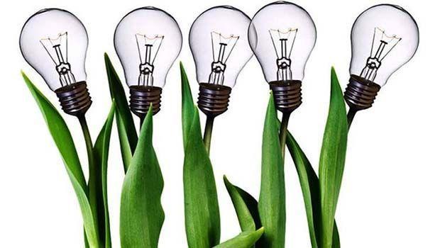 Green design: un premio alla creatività che valorizza il verde
