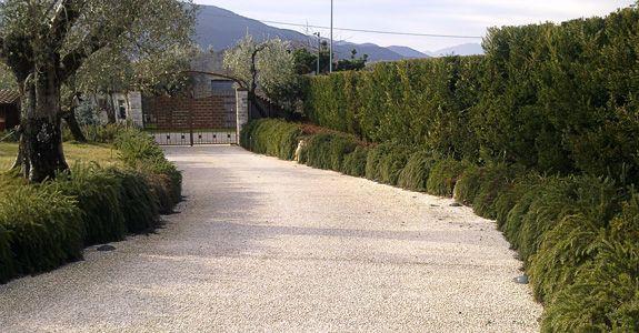 Vialetto economico in ghiaia per il giardino - Vialetto giardino economico ...