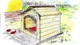 Costruire una cuccia per cani fai da te