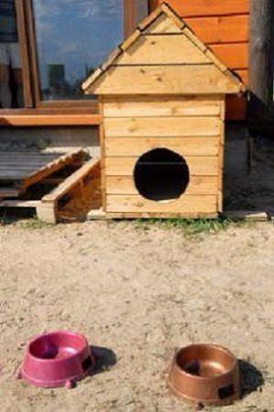 Cuccia cane legno