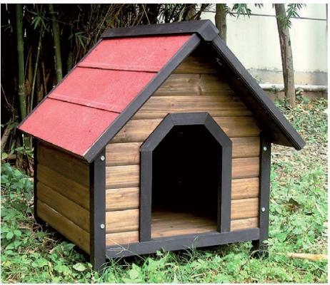 Raggio di Sole: cuccia Calipso: in abete trattato e tetto con guaina impermeabile