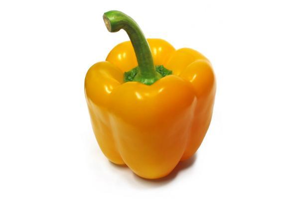 Peperone giallo di Savini Vivai