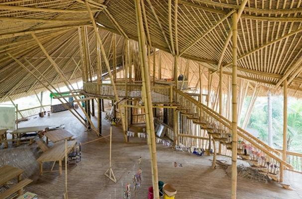 Progetto Green school bambù