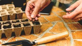 Vasi in materiale naturale 100% biodegradabili