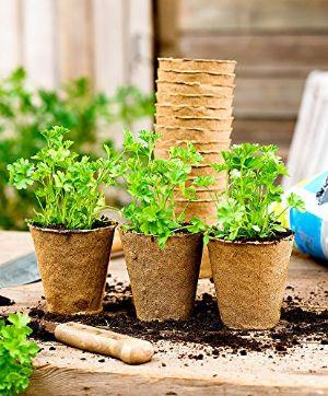 Vasi in fibra di legno