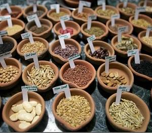 Conservazione dei semi da nimbios.org