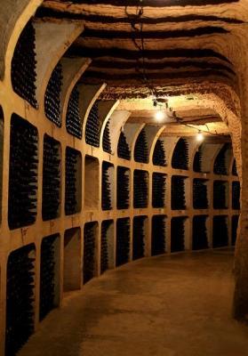 Caratteristiche cantina per conservazione vino