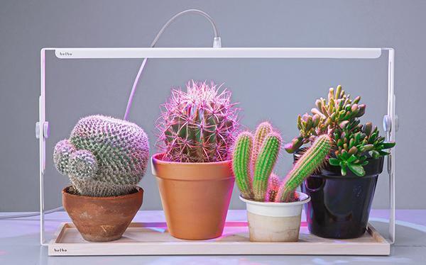 Lampada Quadra per la coltivazione di piccole piante, by Bulbo