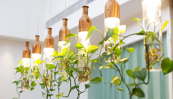 Illuminazione artificiale piante