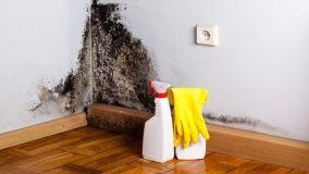 Consigli per cimentarsi in piccoli lavori in casa in fai da te