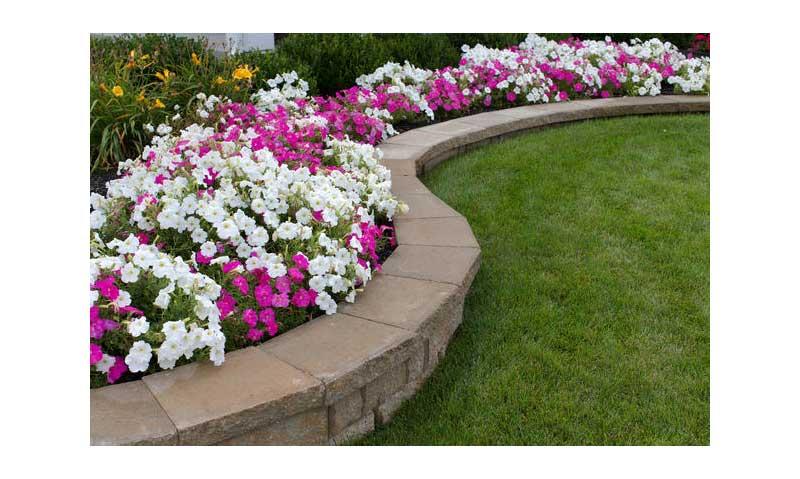 Idee fai da te per la casa e per il giardino