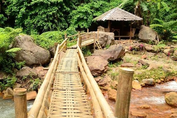 Fibre vegetali: ponte in bambù
