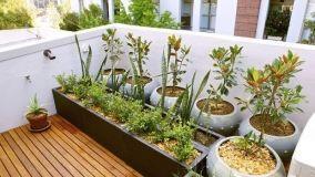 Bonus verde per ristrutturazione e irrigazione spazi esterni