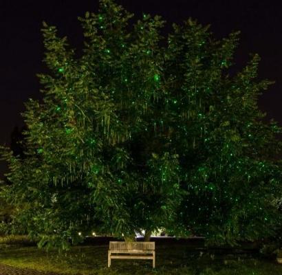 Decorazioni laser verdi di Luminal Park