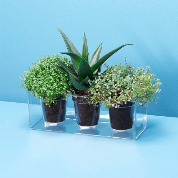 Vaso trasparente regalo di design per Natale, modello Cube di Boskke