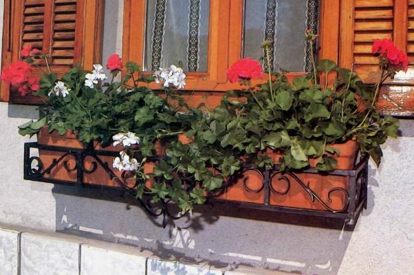 Una fioriera da finestra