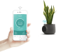 Clairy: controllare la qualità dell'aria di casa da qualsiasi parte del mondo