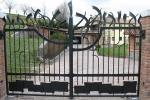 Tessaro Group cancello in ferro con decori stilizzati