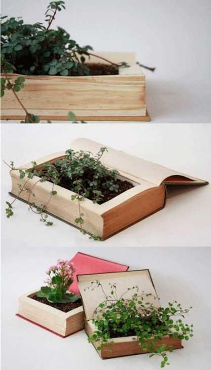 Libri come vasi per piantine, da Jenny Lê