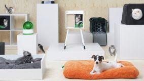 Animali domestici e arredamento: ecco la nuova collezione Ikea