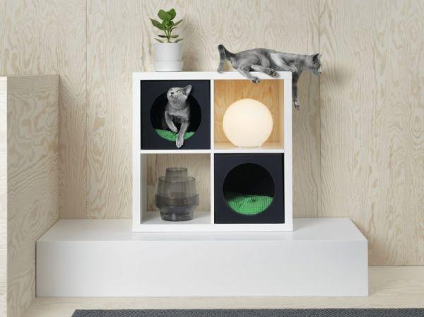 Libreria Kallax di Ikea con accessorio cuccia gatto