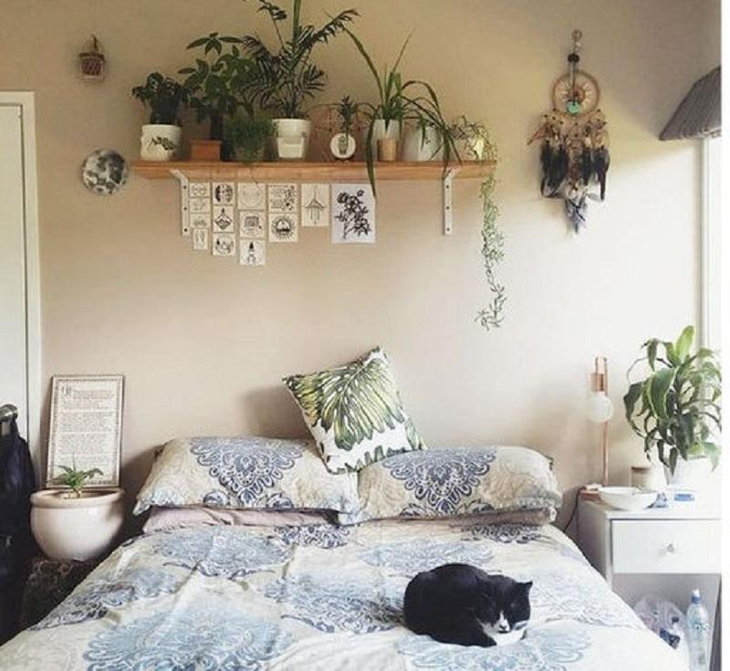 Una mensola da riempire con piante da camera da letto