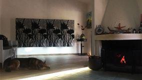 Fasci di luce led su pareti e solai