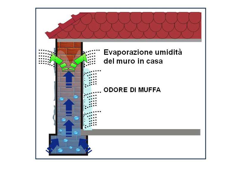 Come deumidificare la casa - Deumidificare la casa ...