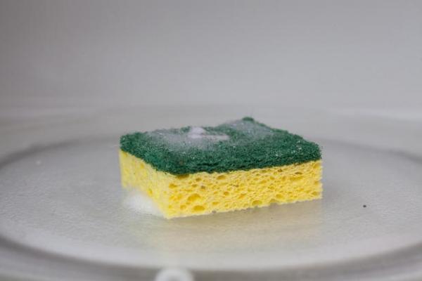 Come igienizzare le spugne al microonde