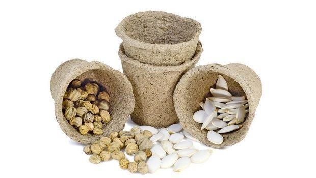 Consigli pratici per utilizzare i vasetti di torba per la semina