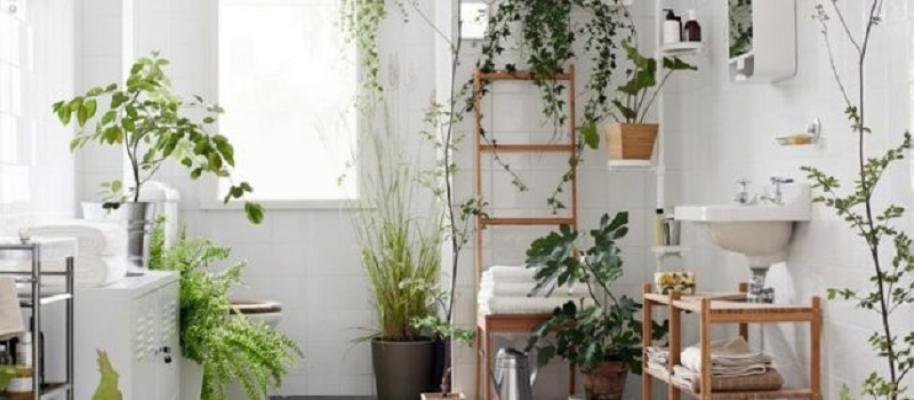 Effetto jungle in bagno, dal blog Architempore